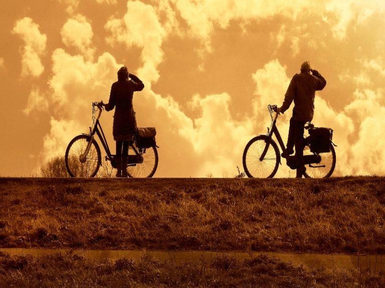 bicis de paseo seguras y comodas