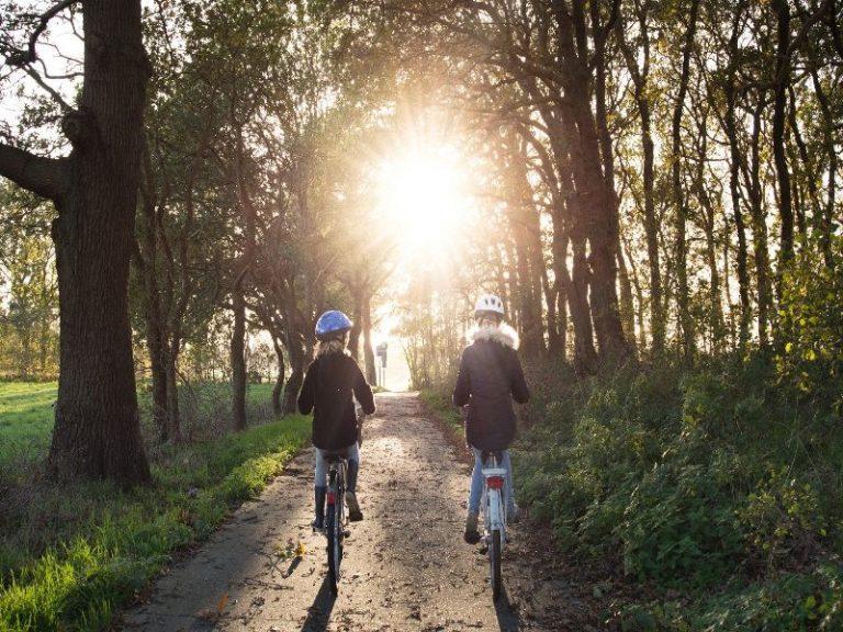 bicicletas de paseo electricas de montaña y electricas de montaña